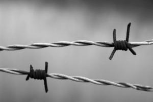 libertad de prensa y covid